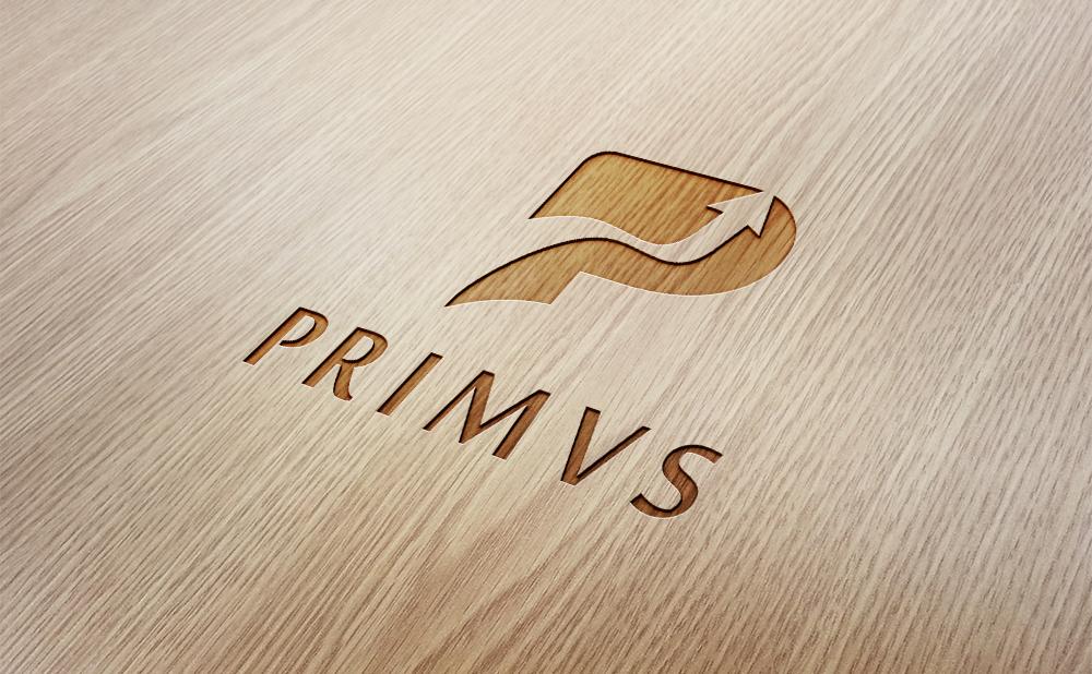 Primvs portfolio 3